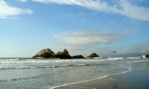 bio-shore